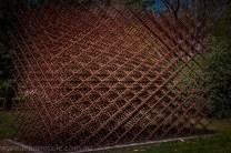 heide-banksia-park-landscape-flowers-103