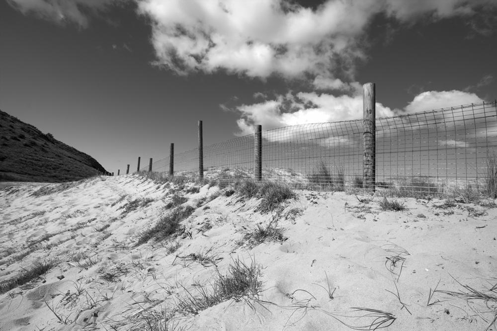 fence-small-stupidityhole