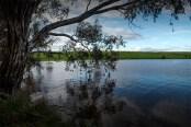 cairn-curran-reservoir-newstead-8077