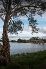 cairn-curran-reservoir-newstead-8089