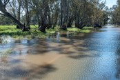 central-victoria-floods-churches-water-8345