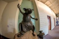state-library-victoria-fisheye-melbourne-1455