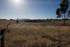 leannecole-mallee-20140124-7270