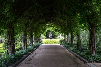 alowyn-gardens-lensbaby-velvet56-yarraglen-1916