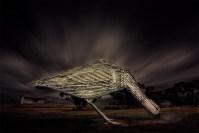 mallee-fowl-sculptures-longexposure-patchewollock