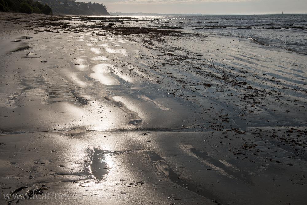 flinders-pier-morning-morning-0217