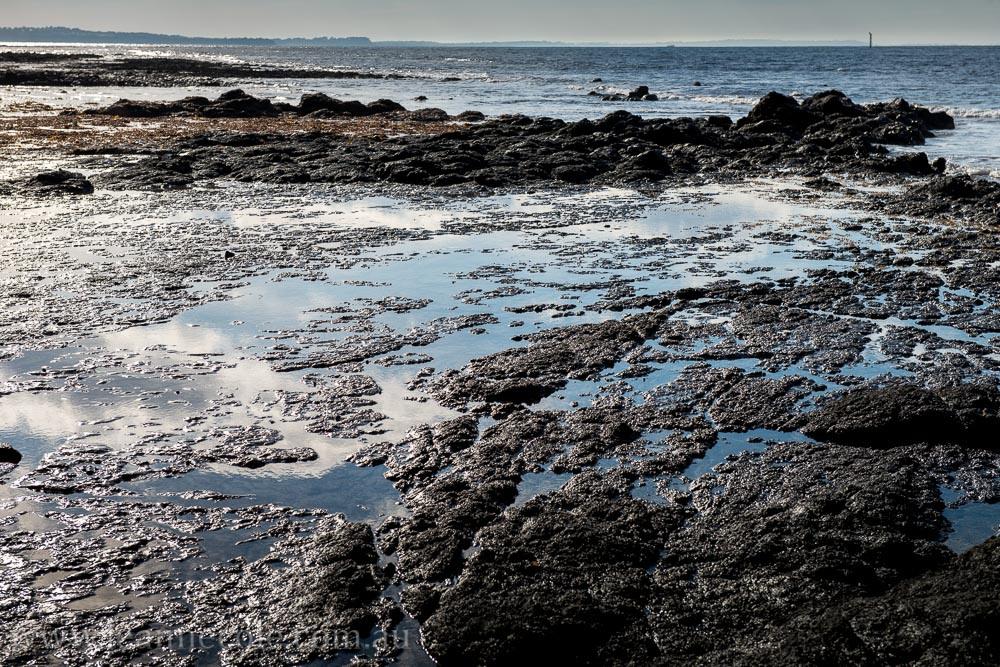 flinders-pier-morning-morning-0228