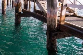 flinders-pier-morning-morning-0270