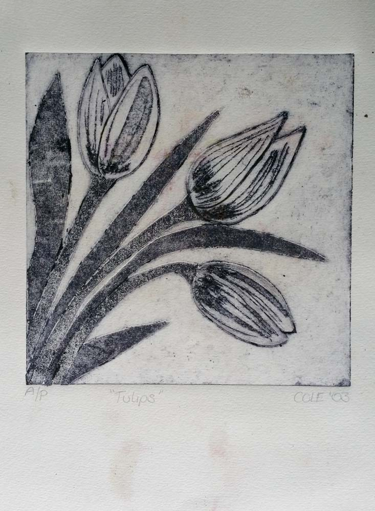prints-drawings-observations-lighting-550