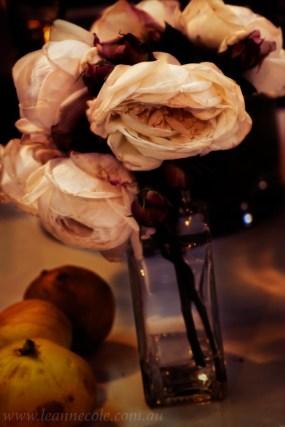 flower-garden-show-macro-edit-1050