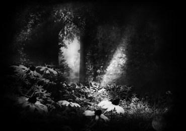 18/ THE RUNES OF THE GATEKEEPER'S DAUGHTER