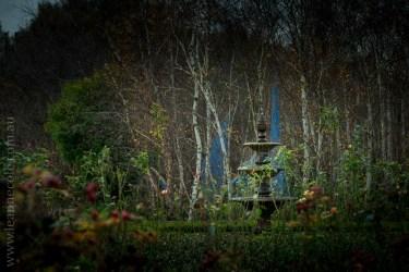 alowyn-gardens-winter-yarra-glen-3289