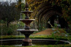 alowyn-gardens-winter-yarra-glen-3363