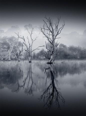 banyuleflats-fog-morning-winter-monochrome