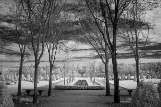 alowyn-gardens-infrared-yarraglen-22932
