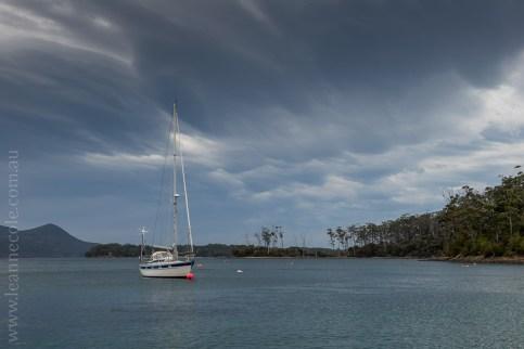 tasmanisland-cruise-pennicott-tasmania-cliffs-9159