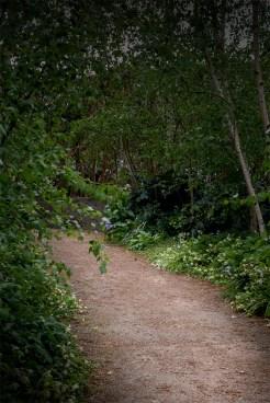 alowyn-gardens-lensbaby-velvet-85-1142
