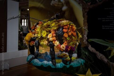 mifgs-flower-gardens-exhibits-melbourne-6701