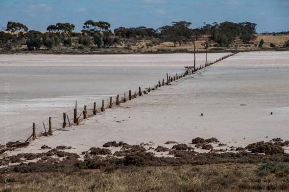 saltpans-salinity-SwanHill-rural-environment-2544
