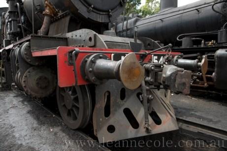 LeanneCole-maldon-20130102-6165