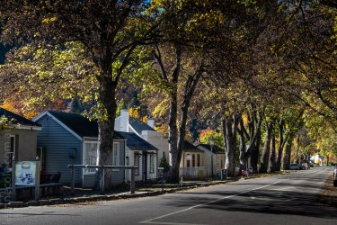 arrowtown-autumn-leaves-historic-newzealand-3044
