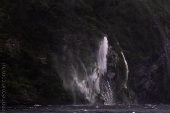 doubtfulsound-boatcruise-fiordland-newzealand-0736
