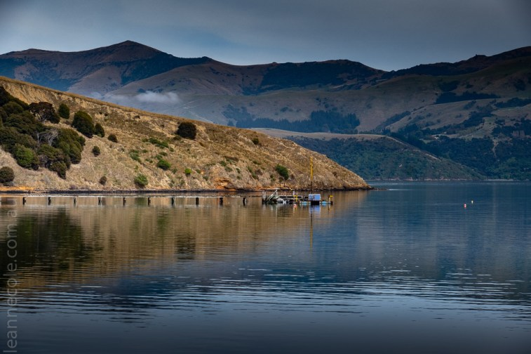 scenic-akaroa-lighthouse-water-newzealand-2286