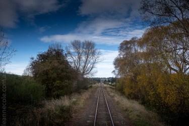 train-taieri-gorge-dunedin-newzealand-1541