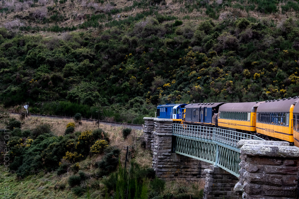 train-taieri-gorge-dunedin-newzealand-1743