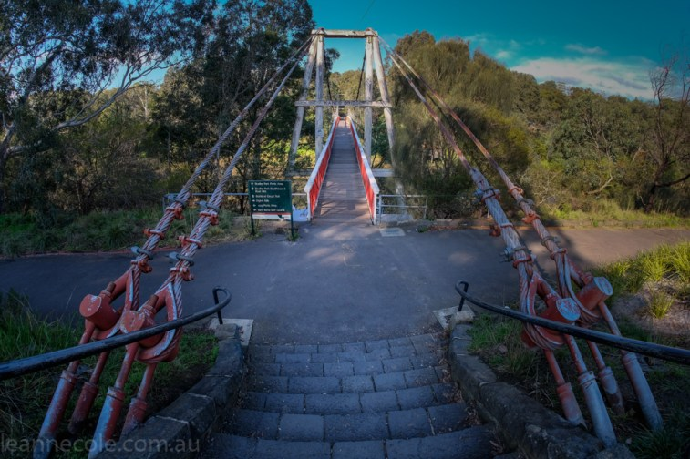 bridge with a fisheye