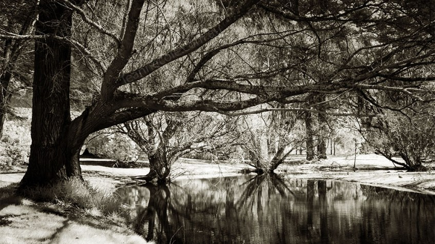 Monochrome Wednesday - Malmsbury in Infrared