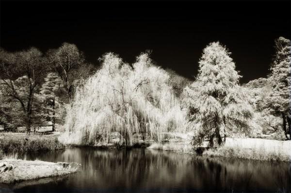 Monochrome Wednesday - Malmsbury in Infrared