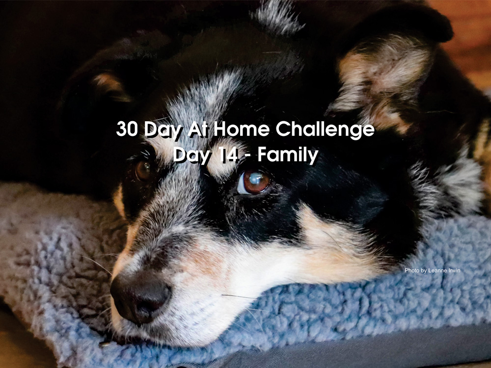 Day 14 – 30 Day at Home Challenge