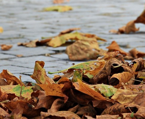 7 Simple Ways to Stay Motivated During Autumn and Winter