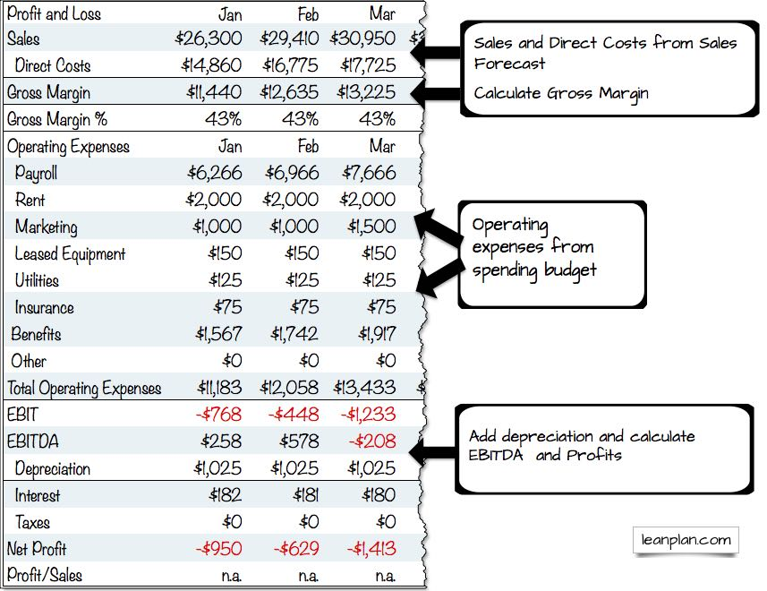 profit and loss projection for business plan template