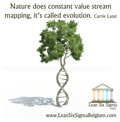 Continuous Improvement Quote - Nature does constant value stream mapping, it's called evolution. Carrie Latet
