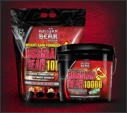 بروتين الدب الروسي