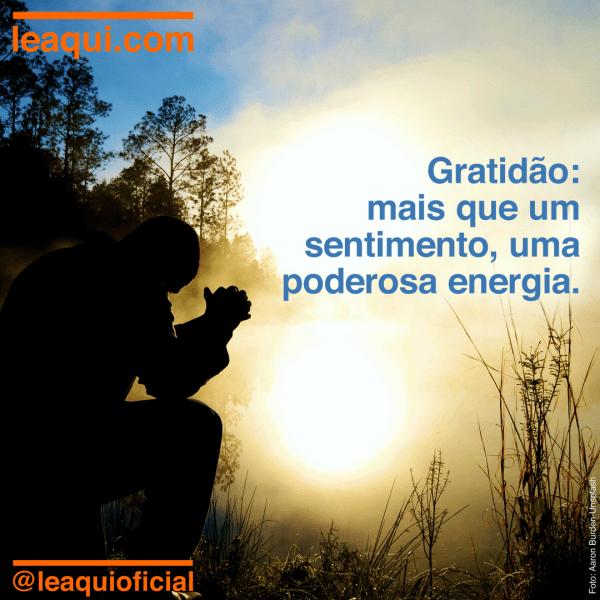 Perfil de homem ajoelhado em meio à natureza pois a gratidão é uma poderosa energia