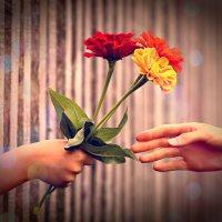 Gentileza: um pequeno gesto que faz a diferença