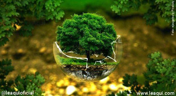 Podemos esperar uma recuperação saudável e verde do planeta?