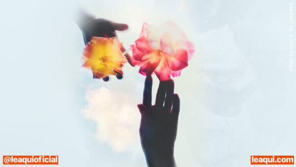 mãos elevadas ao alto com flores lições perfumadas de Chico Xavier