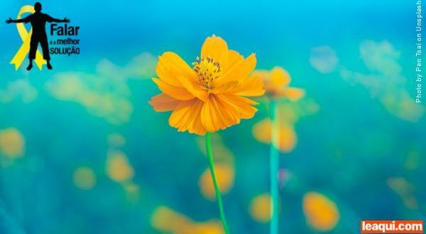 uma flor amarela em meio a um fundo azulado com o simbolo da campanha setembro amarelo Como encontrar conforto na dor do suicídio, segundo Divaldo suicídio e Divaldo