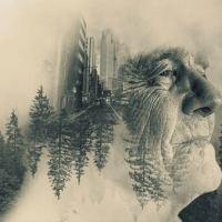 Vidas passadas, vidas futuras, quantas vidas podemos ter?