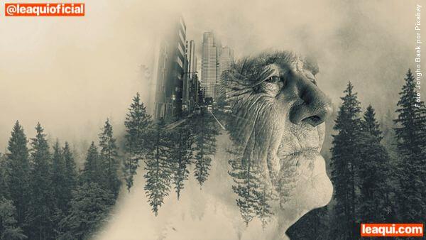 ilustração de um rosto de um senhor idoso em fusão com imagens de cidade e floresta vidas passadas e futuras