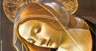 A poderosa oração da Mãe Santíssima contra pestes e epidemias