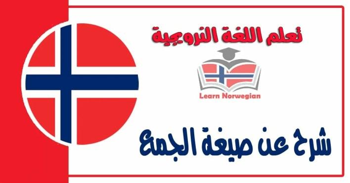 شرح عن صيغة الجمع فياللغة النرويجية