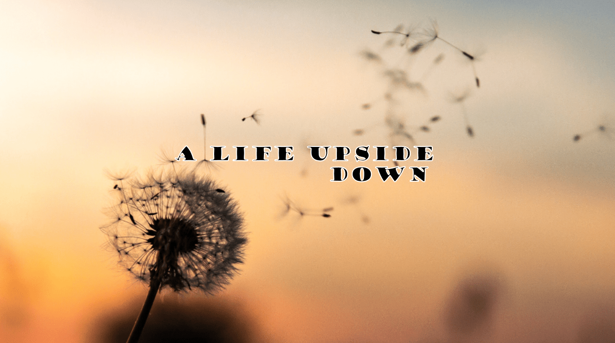 A Life Upside Down