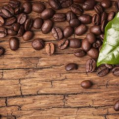 Small Kitchen Dishwashers Drop Leaf Table And Chairs 10 Little-known Facts About Arabica Coffee