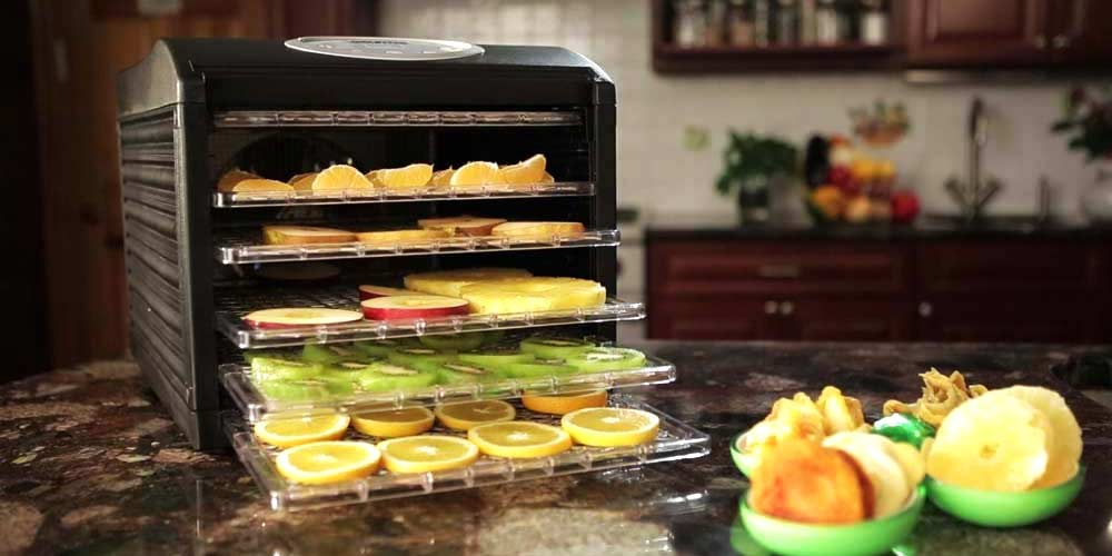 How To Choose The Best Food Dehydrator Buyers Guide