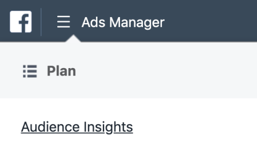 the audience insights link under the facebook ads manager tab